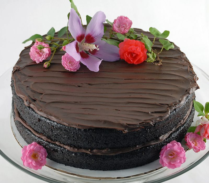 Double Chocolate Layer Cake - Oui, Chef